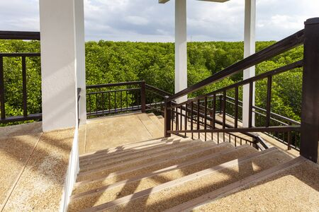 Photo for Spiral staircase in sightseeing tower mangrove forest. - Royalty Free Image