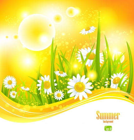 Sunny summer background with sunlight and flowers for your design