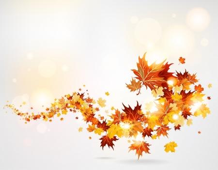 Swirl of leaves