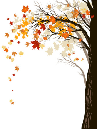 Autumn background with tree.のイラスト素材