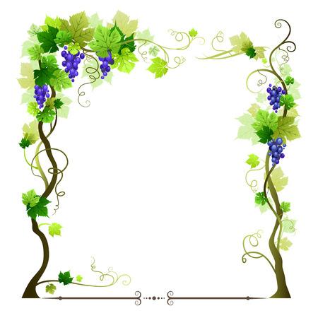 Illustration pour Blue ripe vineyard frame - image libre de droit