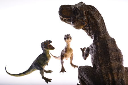 Isolated dinosaurs are fighting on white background