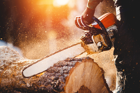 Foto de Chainsaw. Close-up of woodcutter sawing chain saw in motion, sawdust fly to sides. Concept is to bring down trees. - Imagen libre de derechos