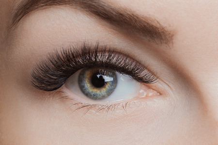Foto de Eyelash extension procedure. Beautiful female eyes with long lashes, closeup - Imagen libre de derechos