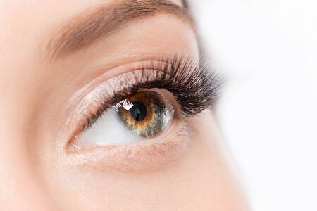 Photo pour Eyelash extension procedure. Beautiful female eyes with long lashes makeup closeup - image libre de droit