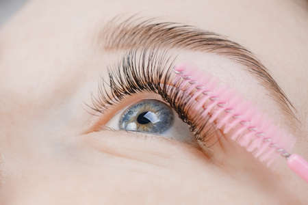 Foto de Eyelash extension procedure. Beautiful female eyes with long lashes, closeup - Imagen libre de derechos