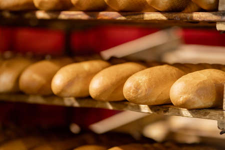 Photo pour Baked breads on automatic production line bakery from hot oven - image libre de droit