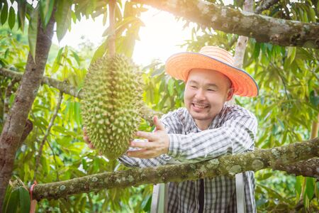 Foto für Asian male farmer looking at Durian in his garden and smiles happily. Durian is a king of fruit in Thailand . - Lizenzfreies Bild