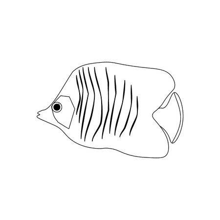 Chaetodon auriga Butterflyfish coloring pages