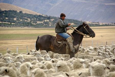 Rider in Chile