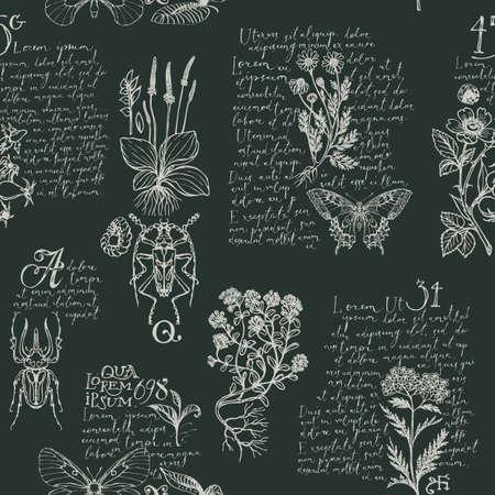 Foto für Seamless pattern with hand-drawn medicinal herbs, beetles, butterflies and handwritten text Lorem Ipsum. Vector repeatable background in retro style. Wallpaper, wrapping paper, textile - Lizenzfreies Bild