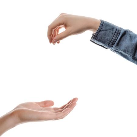 Photo pour closeup woman s hands isolated on white background - image libre de droit