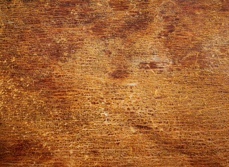 Wood texture with the old cracked varnish surface. Abstract design background.