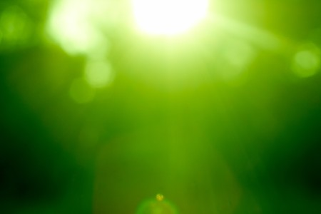 Photo pour Abstract green forest defocused with sunbeam - image libre de droit
