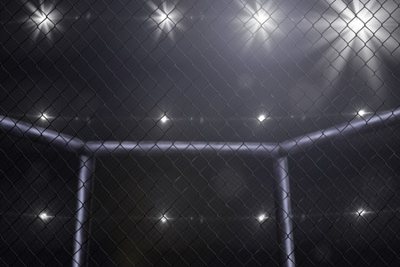Photo for empty mma arena side view under lights - Royalty Free Image