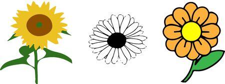 Illustration pour flowers on white background - image libre de droit