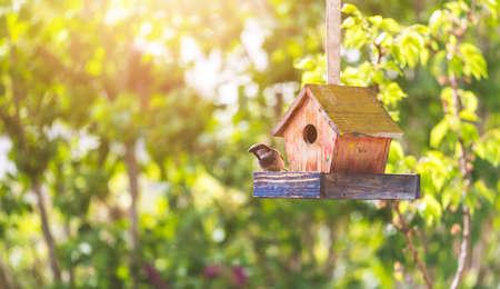 Photo pour Close up of colorful wooden birdhouse hanging in the own garden, summertime - image libre de droit