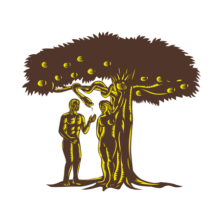 Ilustración de Retro woodcut style illustration depicting the fall of man showing Adam with Eve in garden of Eden picking the apple fruit from the tree after being tempted by the evil serpent snake. - Imagen libre de derechos