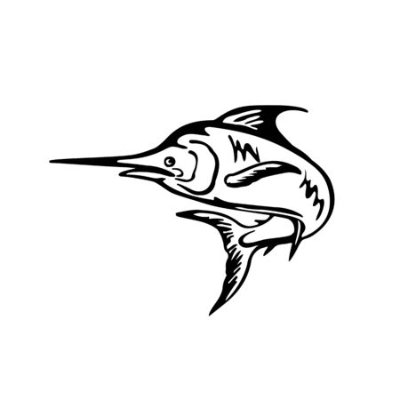 Illustration pour Black and White retro style illustration of a blue marlin fish jumping up viewed from side set on isolated white background. - image libre de droit