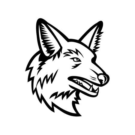 Illustration pour Black and white sports mascot illustration of head of a maned wolf, the largest canid of South America viewed from side on isolated background in retro style. - image libre de droit
