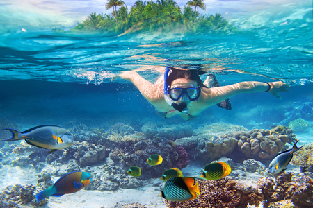 Photo pour Young women at snorkeling in the tropical water - image libre de droit