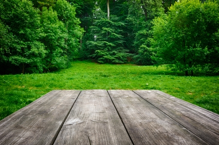 Wooden picnic table with green nature background