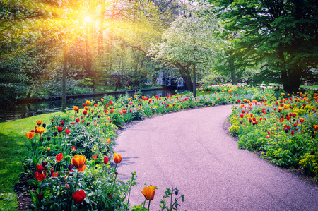 Foto de Spring landscape with colorful tulips. Keukenhof garden, Netherlands - Imagen libre de derechos