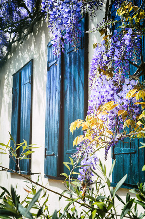 Old windows with blue shutters. Traditional French house