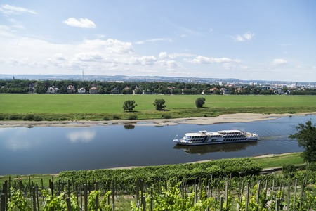 Vineyards on hill near river with ship in a summer day.