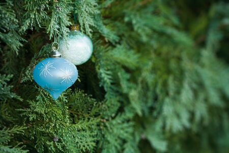 Christmas decorations hanging in a real christmas tree with lots of copy space