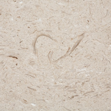 Closeup of texture in sawn limestone with trace fossils