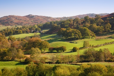 Rolling countryside with green fields and woodland. Langdale, Lake District, Cumbria, UK