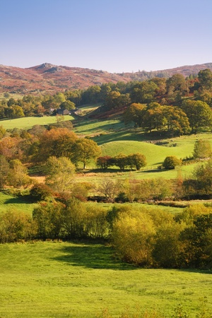 Countryside bathed in afternoon sunlight. Langdale, Lake District, Cumbria, UK