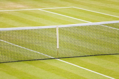Closeup of a lawn tennis court with net and lines