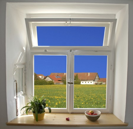 white wooden windows pane with apples and plant with outside view