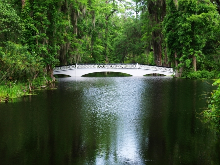 Magnolia Plantation and Gardens, Charleston, SC
