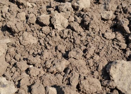 clay soil - closeup