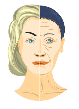 Illustration for Vector illustration of a two parts of face - Royalty Free Image