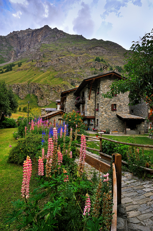 colorful flowers with alps architecture in Rhemes Notre Dame, Valle Aosta, Italy