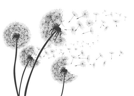 Ilustración de Abstract Dandelions dandelion with flying seeds - for stock - Imagen libre de derechos