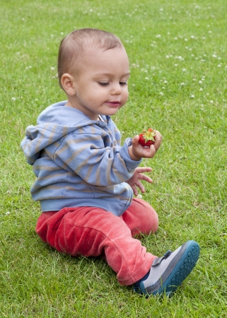 Baby or a toddler child eating strawberry while sitting on the grass in a garden