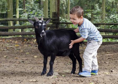 Child boy petting a black goat on a farm.