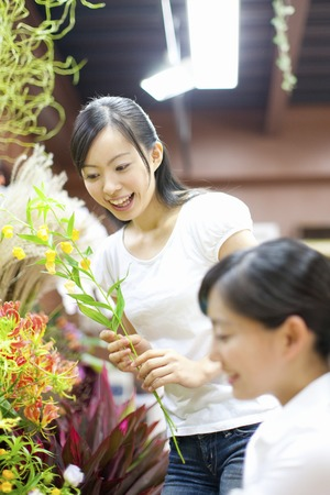 Female flower shop clerk and customer