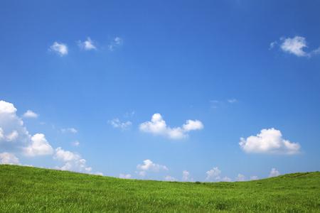 Soni plateau in summer