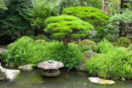 Lush Japan Garden