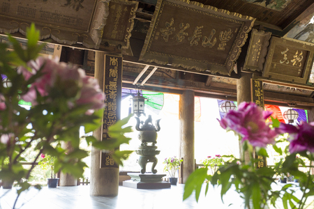 Hase of the main hall and peony