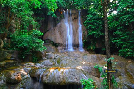 Photo for beautiful waterfall and green leaf Makes it feel fresh - Royalty Free Image