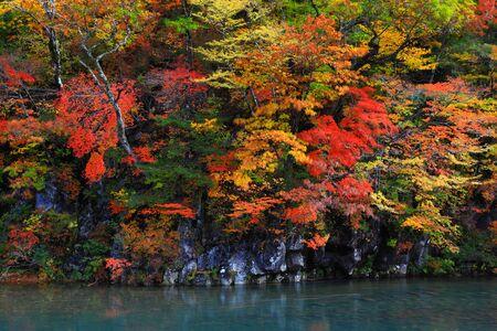 Photo pour Law autumn falls - image libre de droit