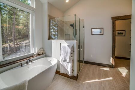 Photo pour Efficiently spaced master bathroom shower and freestanding tub - image libre de droit