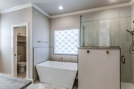 Photo pour Modern private master suite with freestanding tub and large shower - image libre de droit